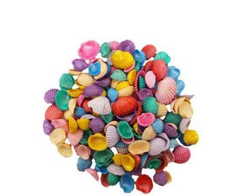 Dyed Small Baby Ark Pearl Seashells