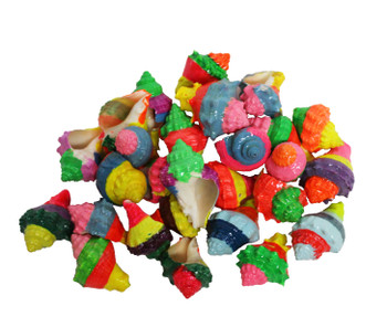 Dyed Small King's Crown Bright Candy Coated Seashells