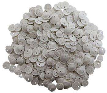 Keyhole Sanddollar