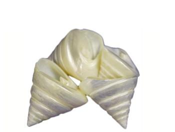 Pearlized Trochus