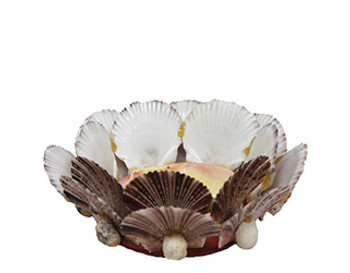 Pecten Pyxidatus Candle Holder