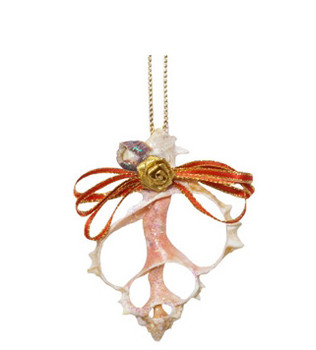 Sliced Pink Murex Seashell Ornament