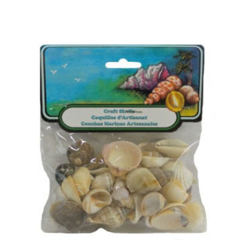 Small Natural Mix Seashells