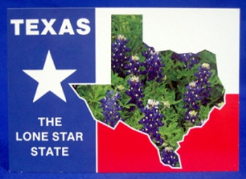 Texas Lone Star State Postcard