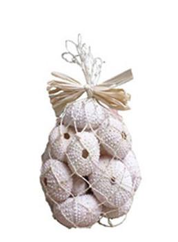 White/Pink Urchins-Natural Bag