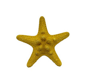 Yellow Dyed Armoured Star