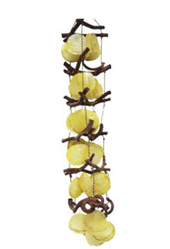 Curly Vine With Yellow Saddle
