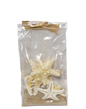 White Armoured Starfish W/Raffia