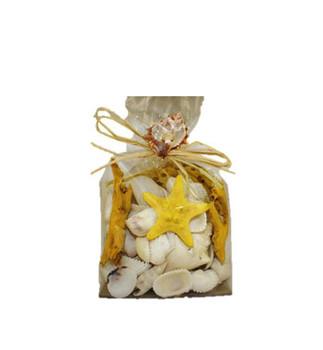 Yellow & White Shell Mix
