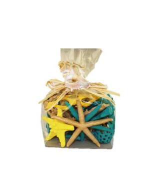 Spring Starfish & Cholla Mix
