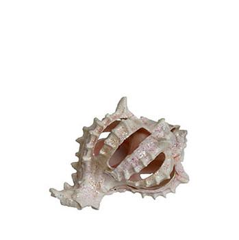 Glittered Spiral Pink Murex For Ornaments