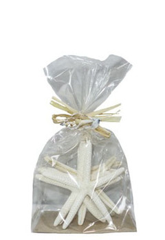 "Finger Starfish 4-5""- 6 pc in crispy bag w/raffia & slice tie"