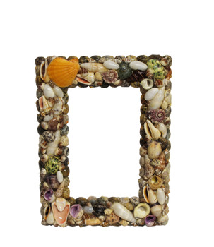 Seashell Picture Frame 6.5 x 8.5""