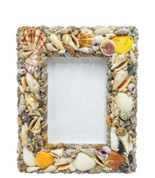 Seashell Picture Frame  9 x 11""