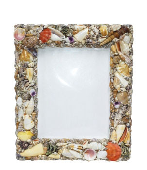 """Seashell Picture Frame  12 x 14"""""""