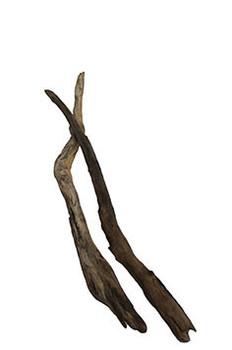 "Driftwood 18 - 24"""