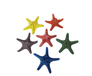 Assorted Dyed Armoured Starfish 4 - 5""