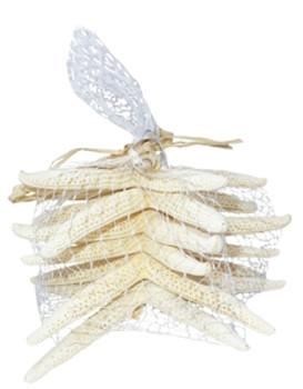 White Finger Starfish in Mesh Bag