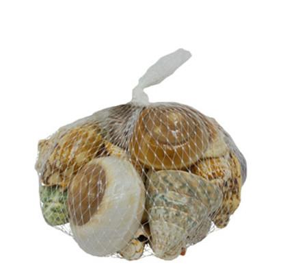 Deluxe Seashell Bag