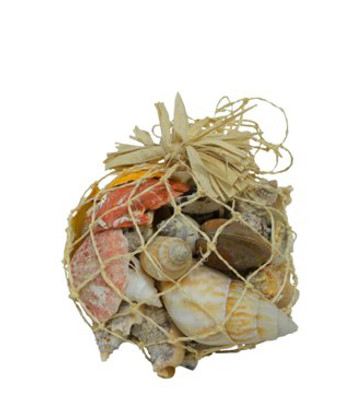 Natural Net Shell Bag