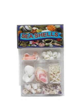 Pink and White Seashell Collection