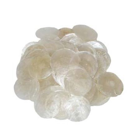 Capiz Seashells