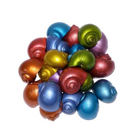 Dyed Metallic Small Apple Snail