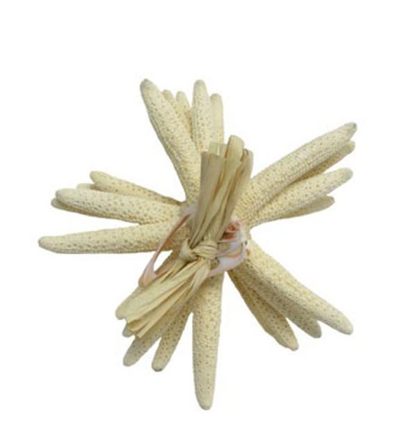 """White Finger Stars 8 - 10"""" Gift"""