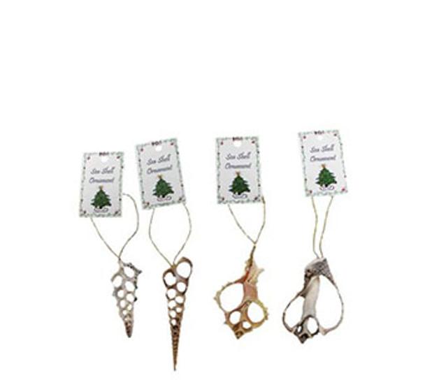 Assorted Sliced Seashell Ornaments