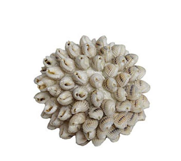 Polysterine Shell Ball