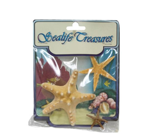 Mixed Starfish-