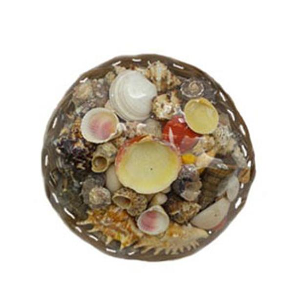 "10"" Midrib Basket Seashell Pack"