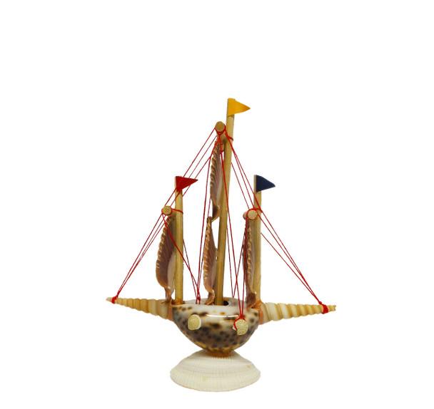 Tiger Cowrie Seashell Sailboat