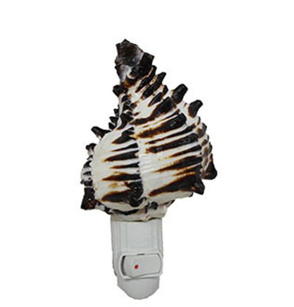 Black Murex Seashell Night Light