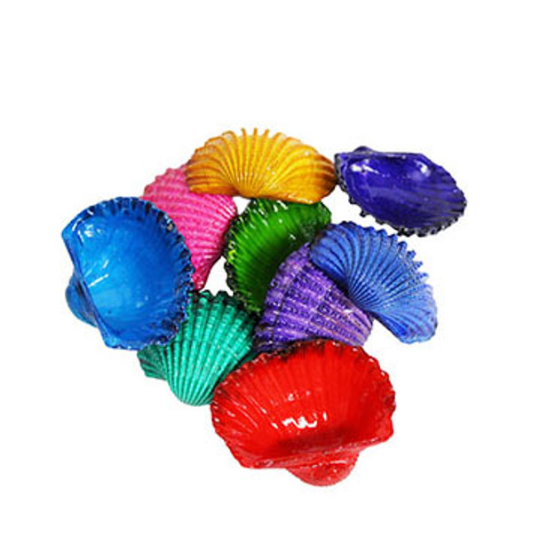 Dyed Ark Seashells