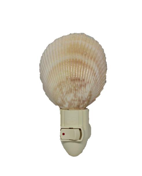 Large Rose Cockle Seashell Night Light