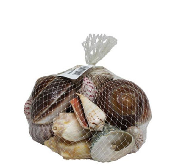 Lg Deluxe Shell Bag