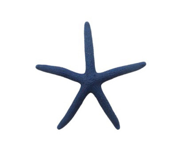 Navy Dyed Finger Starfish