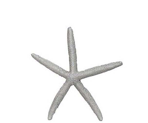 Painted Finger Starfish-Silver