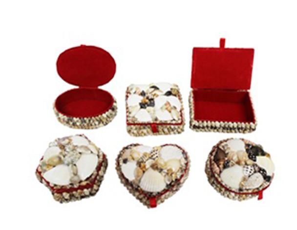 Shell Jewelry Box Medium