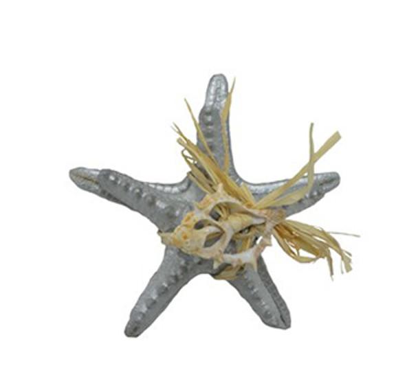 Armoured Starfish Silver Bundle
