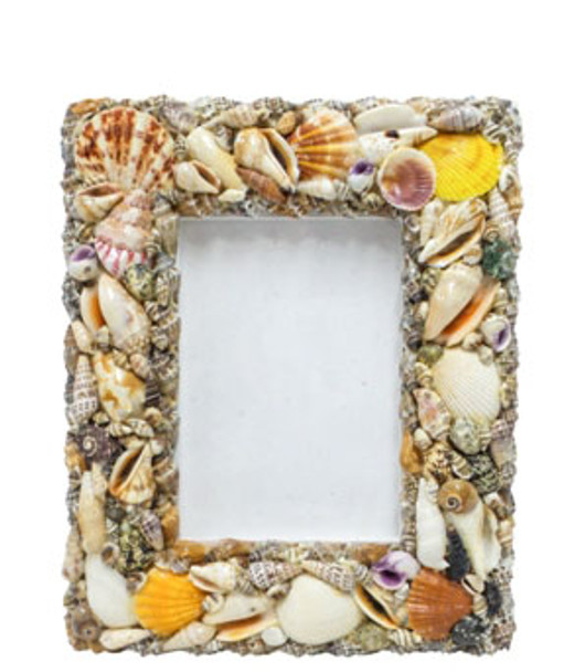 """Seashell Picture Frame  9 x 11"""""""