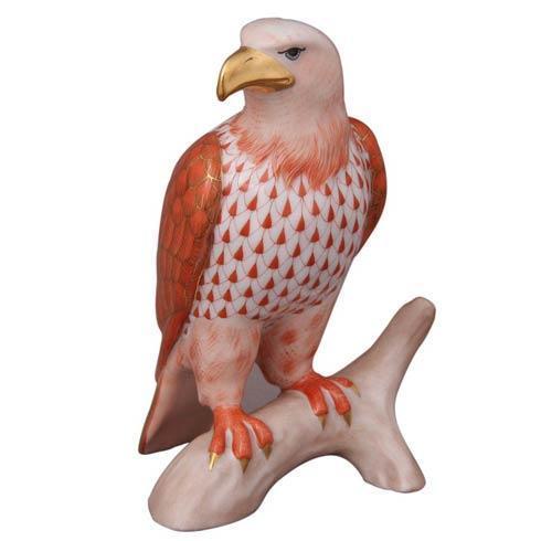 Small Bald Eagle