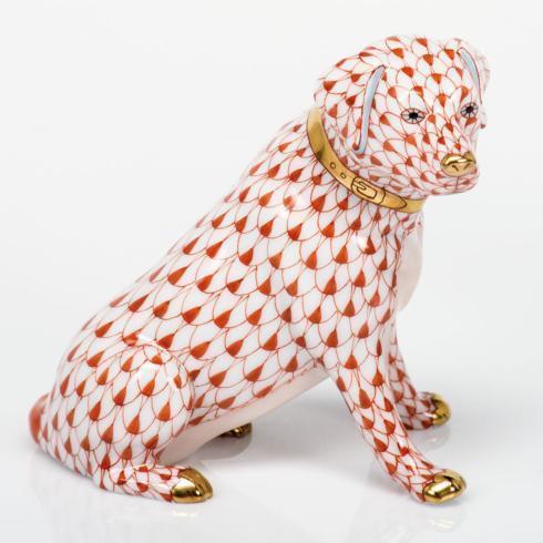 Labrador Retriever - Rust