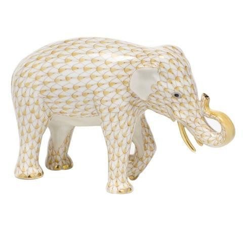 Asian Elephant - Butterscotch