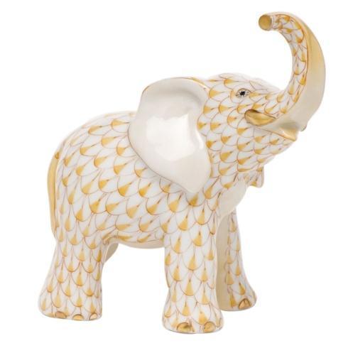 Young Elephant - Butterscotch