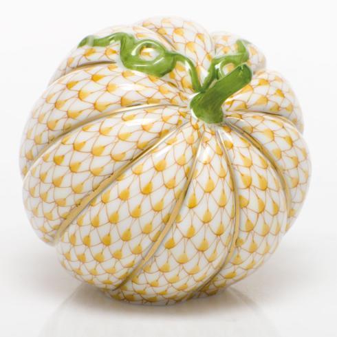 Acorn Squash - Butterscotch