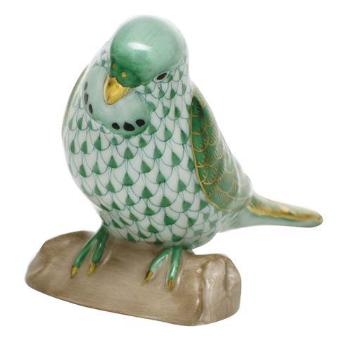 Parakeet - Green