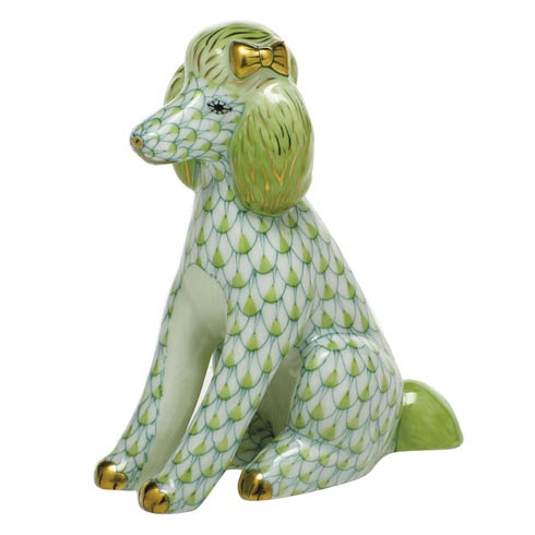 Dogs Poodle-Key Lime