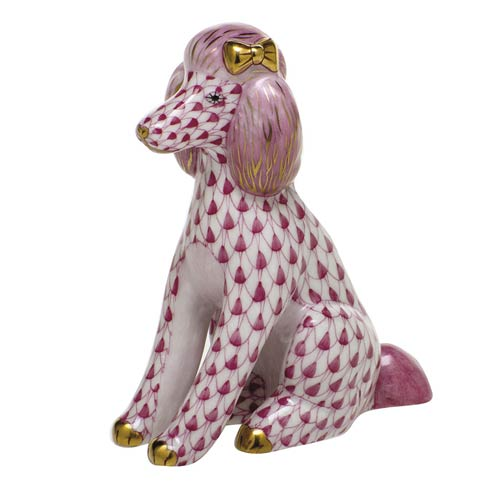 Dogs Poodle-Raspberry